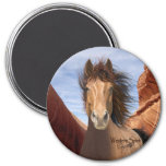 Wind Runner Wild Stallion magnet