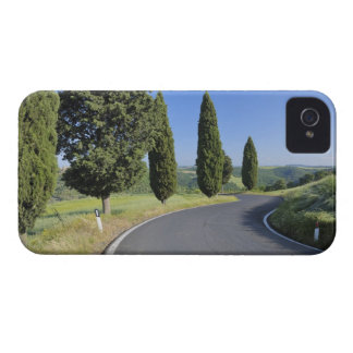 Winding Road Lined with Cypress Trees, Val iPhone 4 Case-Mate Cases