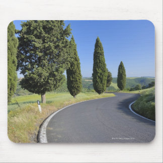 Winding Road Lined with Cypress Trees, Val Mouse Mat