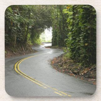 Winding roads through rainforest, Island of Coaster