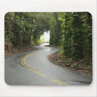 Winding roads through rainforest, Island of Mouse Pad