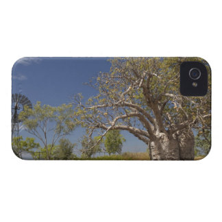 Windmill and boab tree Case-Mate iPhone 4 case
