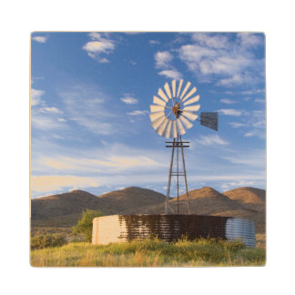 Windmill And Dam In The Karoo At Sunrise Wood Coaster