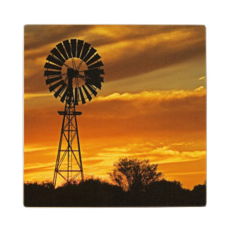 Windmill and Sunset, William Creek, Oodnadatta Wood Coaster