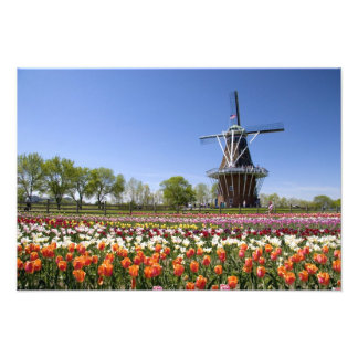 Windmill Island park with tulips in bloom at Photo Art