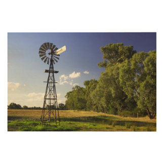 Windmill near Hume Highway, Victoria, Australia Wood Canvas
