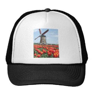 Windmill Tulips Hats