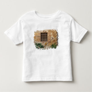 Window and ancient stone wall, Pienza, Italy Toddler T-Shirt