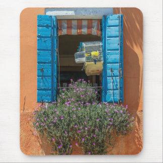 Window and birdcage mousepad