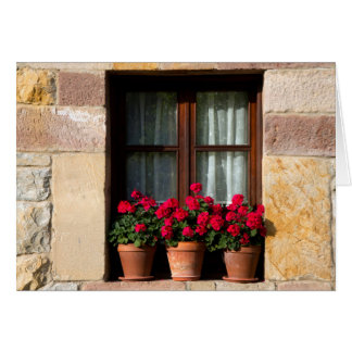 Window flower pots in village card