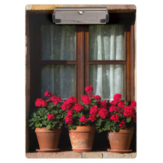 Window flower pots in village clipboard