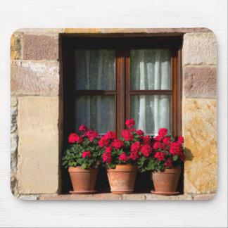 Window flower pots in village mouse pad