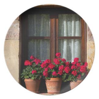 Window flower pots in village plate
