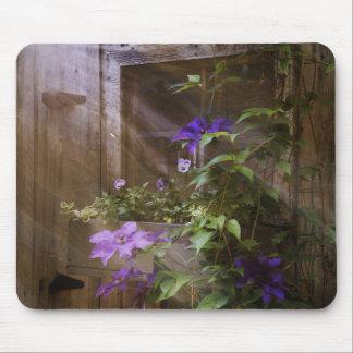 Window flowers mouse mat