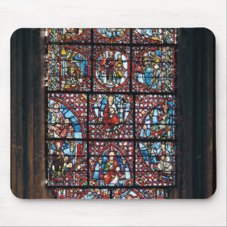 Window from the ambulatory mouse pad