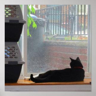 Window Gazing Lucy Posters