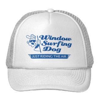 Window Surfing Dog 2 Cap