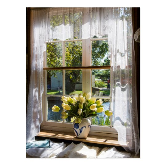 Window with lace curtain and tulips postcard