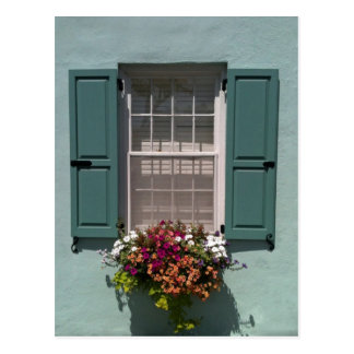 Window with turquoise shutters and  window box postcard
