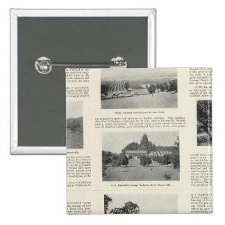 Windsor, California 15 Cm Square Badge