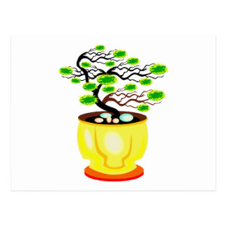 Windswept Bonsai Huge Pot Color Postcard