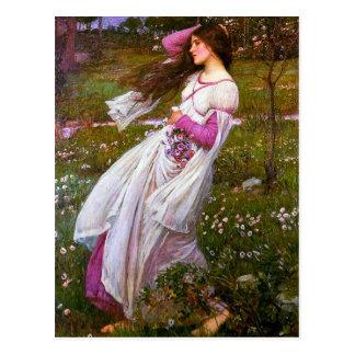 Windswept by John William Waterhouse Postcard