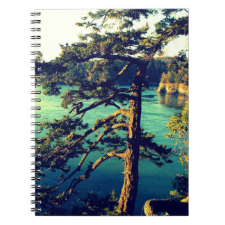 Windswept Seaside Trees Notebook ~ Deception Pass