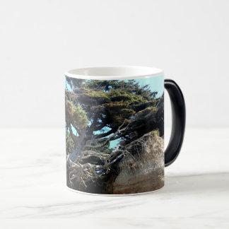 Windswept Tree of Life Washington Coast Morph Mug
