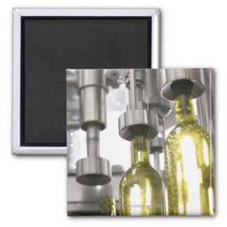wine bottles being filled with wine at factory magnets