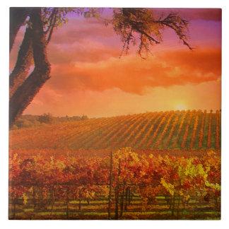 Wine Country Art Tile