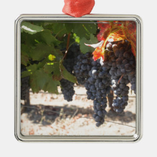 Wine Country Grapes Christmas Ornament