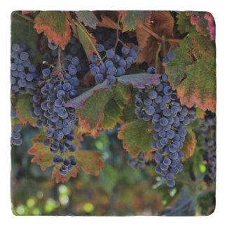 Wine Country Tuscan Decor Vineyard Trivet
