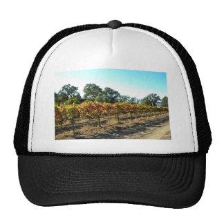 Wine Grapes in Mendocino County, California Trucker Hats