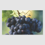Wine Grapes Rectangle Stickers