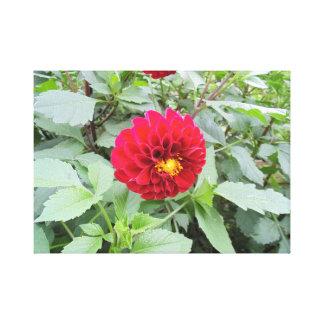 Wine Red Flower Canvas Print