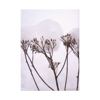 Winetr, Plants in the snow  Single Canvas Print