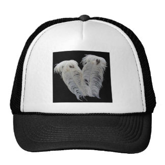 wing hat