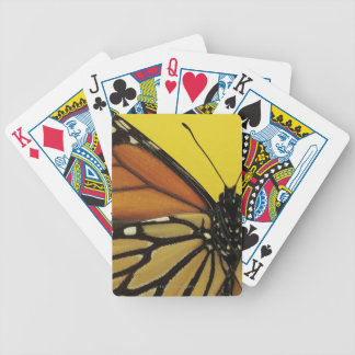 Wing of a butterfly bicycle playing cards