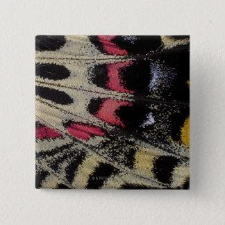 Wing underside close-up Bhutanitis mansfieldi 15 Cm Square Badge