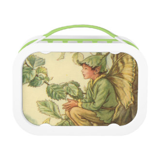 Winged Elm Fairy Sitting in a Tree Lunch Box