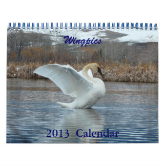 Wingpics 2013 bird calendar