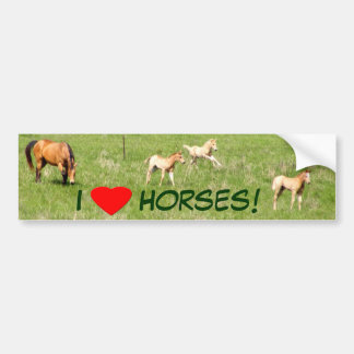 Wings of May: Horses Bumper Sticker