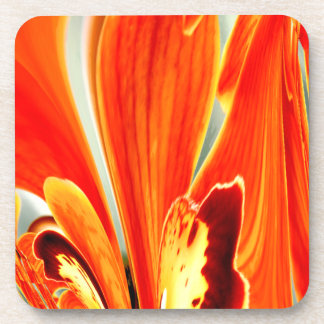 Wings of Orchid Design Coasters