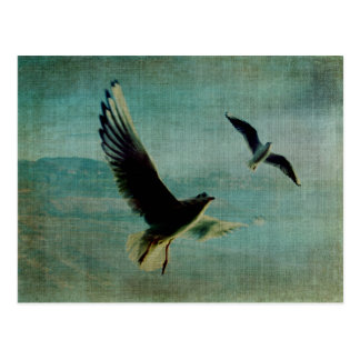 Wings over the World Postcard
