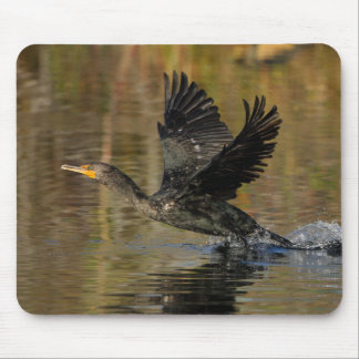 Wings Up Mouse Pad