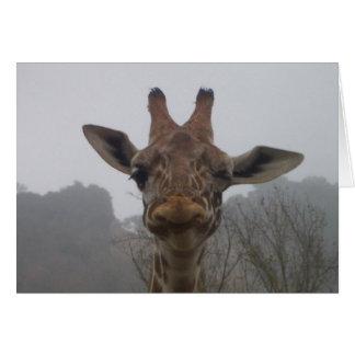 Winking Giraffe Greeting Card