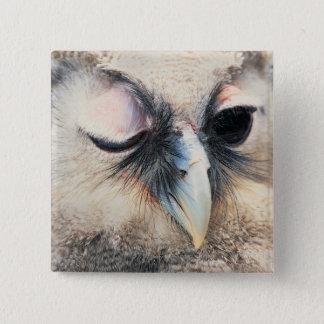 Winking Owl 15 Cm Square Badge