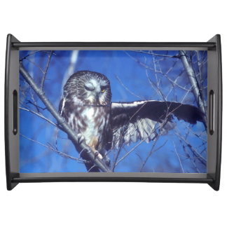 Winking owl serving tray