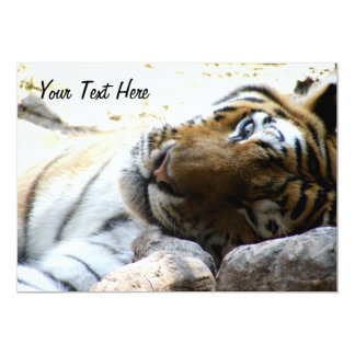 Winking Tiger 13 Cm X 18 Cm Invitation Card