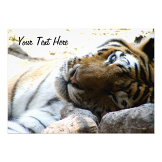 Winking Tiger Personalized Announcements